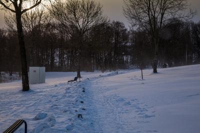 Schnee2 (1 von 1)