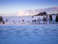 Schnee3a (1 von 1)
