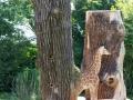 Giraffe-Baby-versteckt2